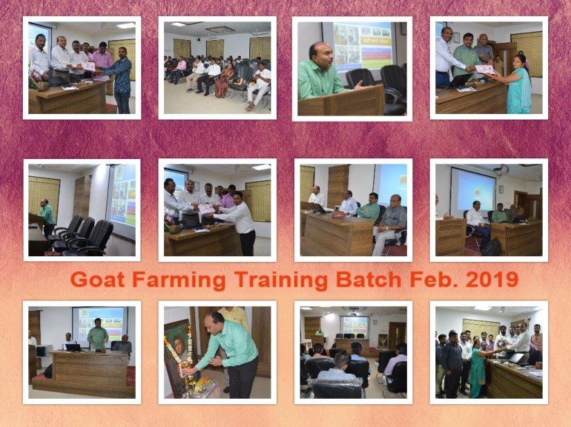 SHEEP & GOAT FARMING TRAINING – SHEEP AND GOAT FARMING